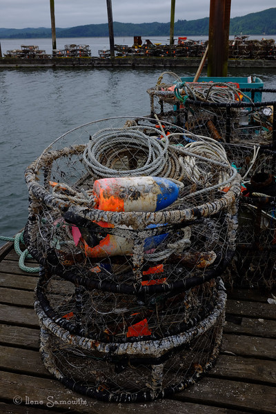 7-26-13 On the Tokeland Dock