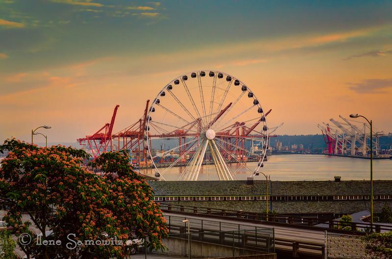 8-7-13 Ferris Wheel in Seattle. More obsession.