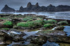 8-13-13 Seal Rock, Oregon at low tide. The anemones were found in these tide pools.