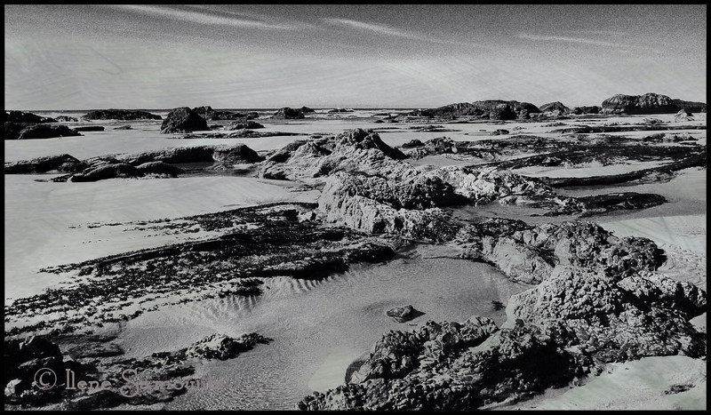 5-5-13 This was taken at Quail Beach, Oregon.  I converted it to black and white and it kind of reminds me of a Martian landscape.
