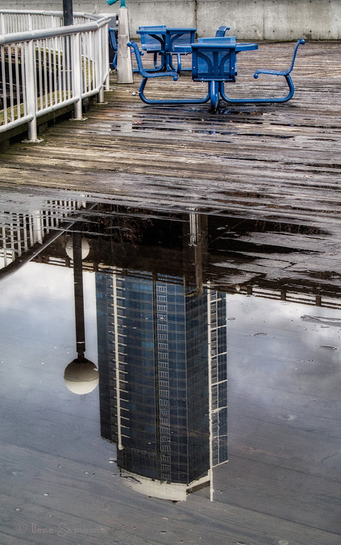 1-26-13 Skyscraper Puddle Reflection - down at the Seattle waterfront yesterday during my lunch break I saw this interesting reflection.