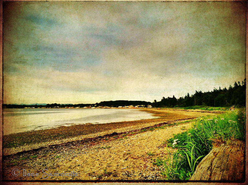 6-15-16 Taken today  with my iPhone 4 and processed on my iPad.   Birch Bay State Park, WA,  I am hoping to some long exposure work tomorrow.