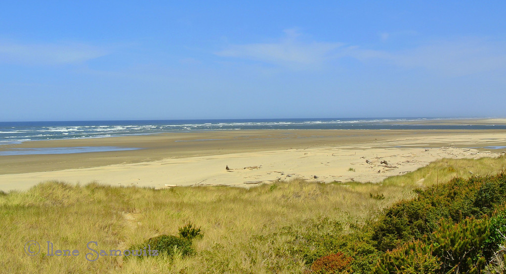5-3-13 We just purchased land on the Oregon Coast in Waldport.  The land is about .25 miles from the ocean and about 1 mile in each direction from State Park Beaches.  This is a picture from Patterson Beach which is the one to the north.  I expect to be sharing more and more images from this area.