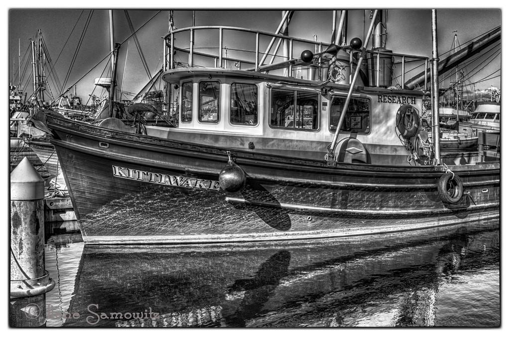 9-21-13 K is Kittiwake. This as taken at Fisherman's Terminal, Seattle, WA.