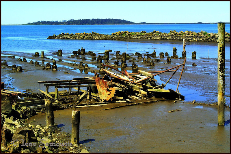 "5-4-13 I shot this image earlier today at low tide with my Nikon 1 V1 in Bay City, Oregon.  I processed it on my ipad and uploaded to Smugmug using Camera Awesome.  This image is an example of how important it is to take a photo when you see it.  Here is the shipwreck the last time I photographed it.  <a href=""http://www.ilenesamowitz.com/Photo-A-Day/PAD2012/27352292_Mgj3r6/1993820141_ZHKGSST#!i=1993820141&k=ZHKGSST&lb=1&s=A"">http://www.ilenesamowitz.com/Photo-A-Day/PAD2012/27352292_Mgj3r6/1993820141_ZHKGSST#!i=1993820141&k=ZHKGSST&lb=1&s=A</a>"
