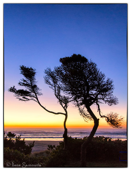 2-6-13 Silhouette at Waldport taken with the Nikon 1 v1.