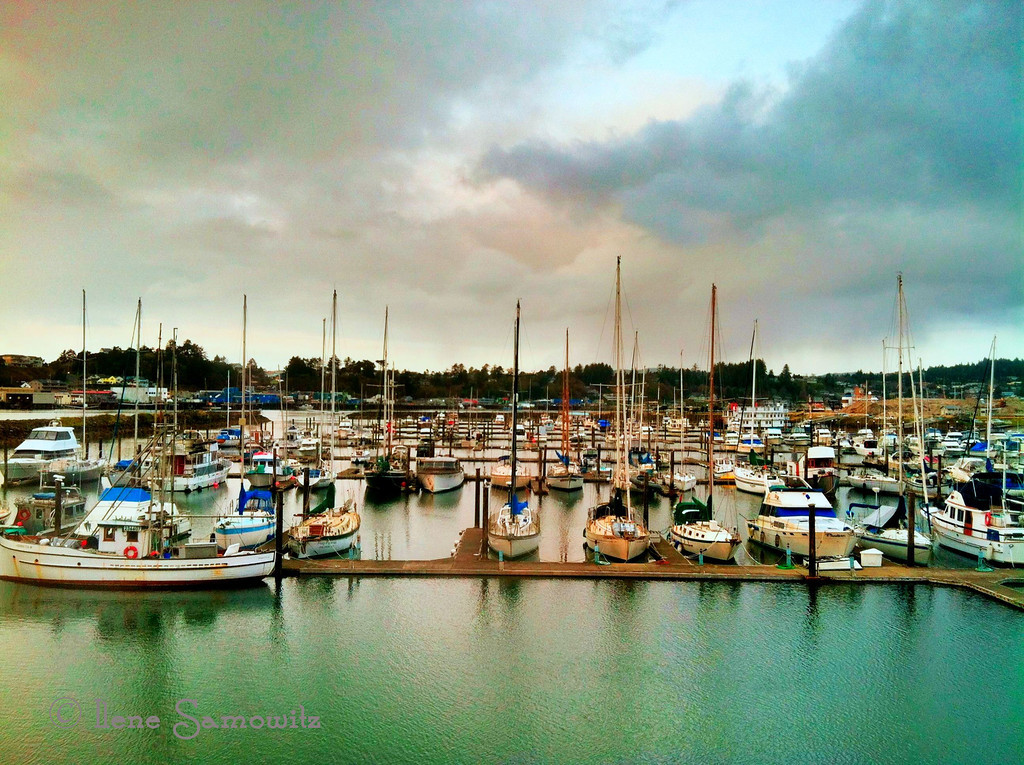 3-23-13 Newport, Oregon Marina taken from the Rogue Nation Brewery<br /> <br /> Captured with my iPhone 4 and processed with Camera Awesome