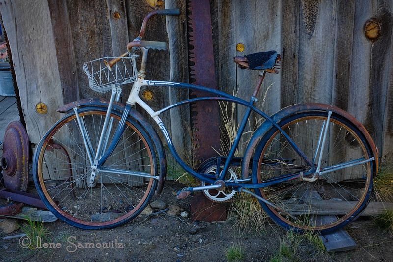 11-21-13 Old Bicycle at Barely There Ranch