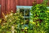 6-25-13 Greenbank Farm window