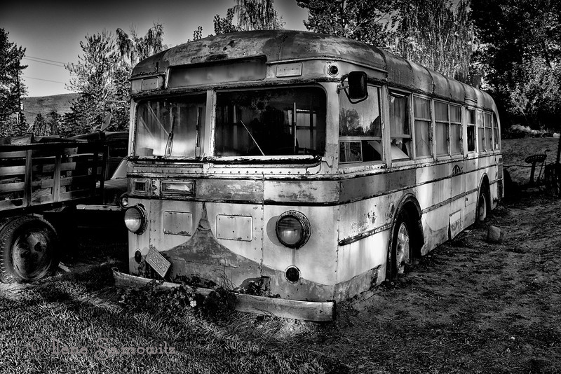 12-26-13 From the Dufur car yard.  Converted to black and white with Silver Effex pro 2.