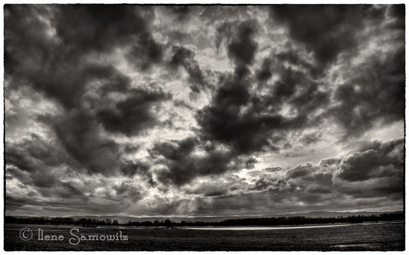 Early Spring Ridgefield Sky