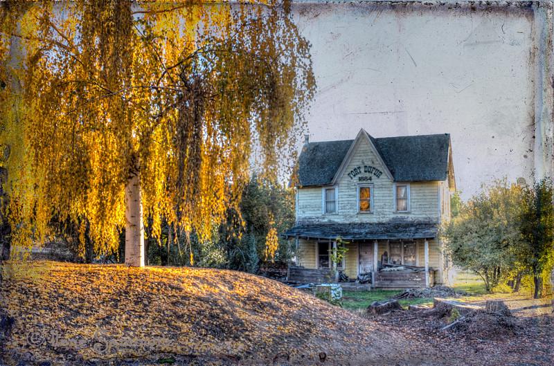 Dufur in fall