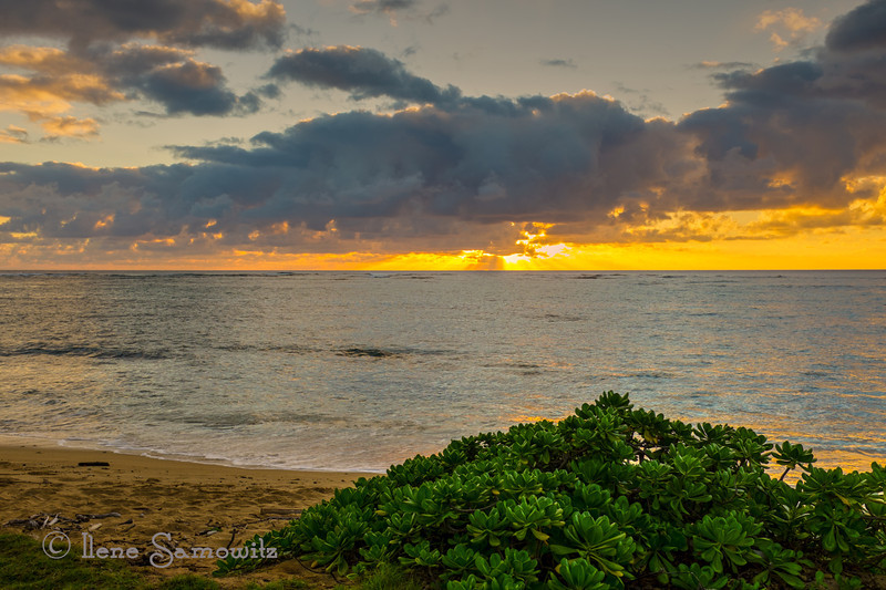 Another beautiful Kauai sunrise in Kapaa.