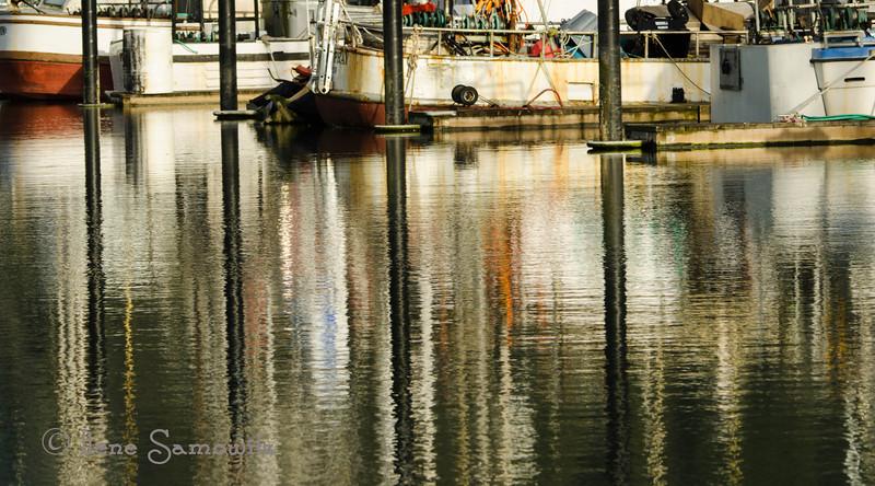 Garibaldi Marina Reflections, Oregon Coast, OR