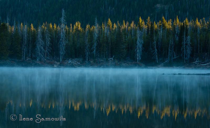 Autumn Misty Morning in the Cascades