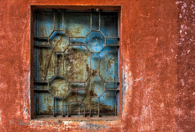 A Window at the Bangalore Botanical Garden.