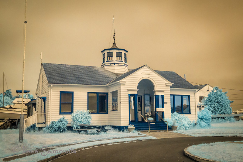 Port Townsend beauty in infrared.