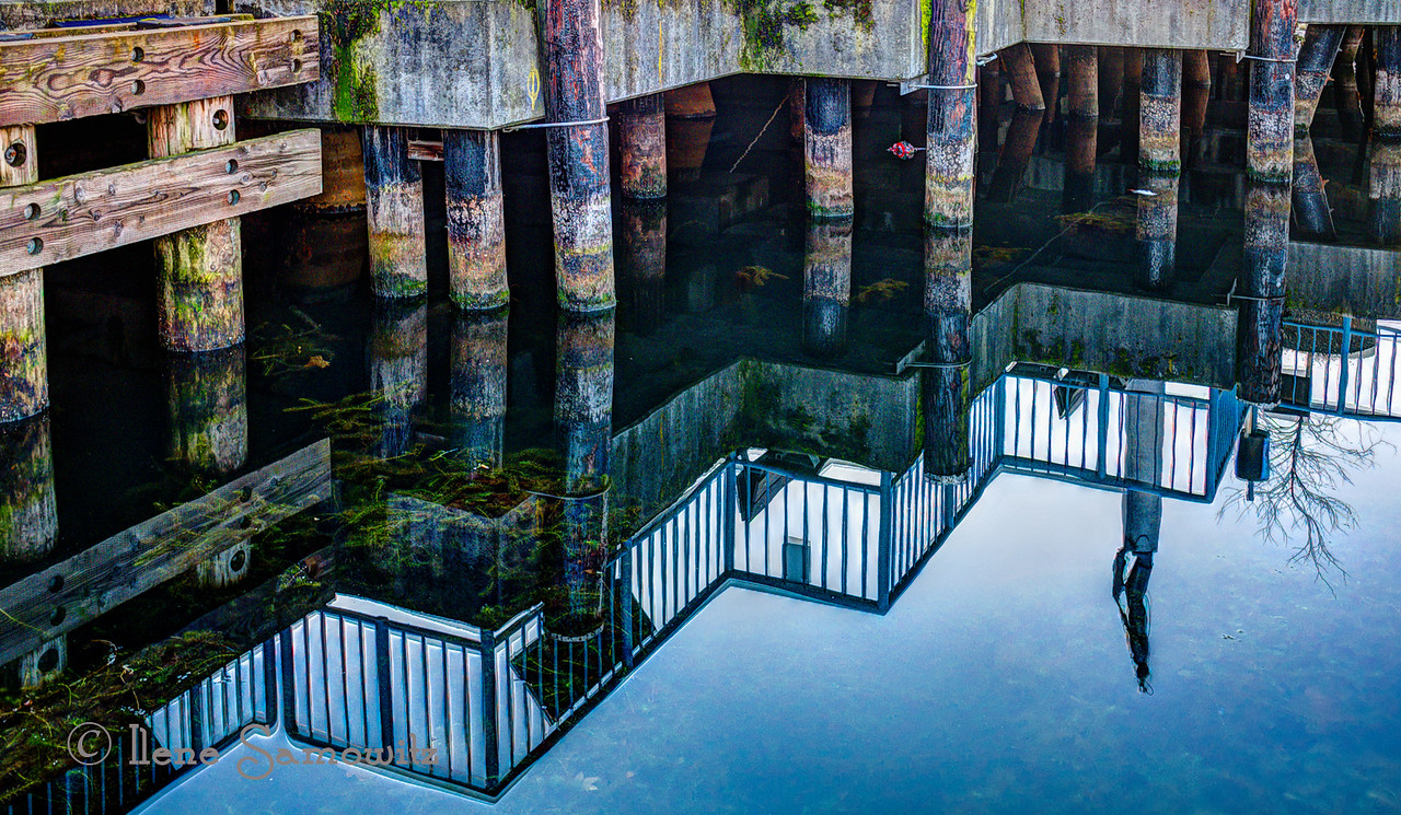 Pier pilings and reflections along with the commemorative statue reflection. Taken at Fisherman's Terminal, Seattle, WA.