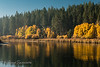 Fall Reflections in the Central Oregon Cascades