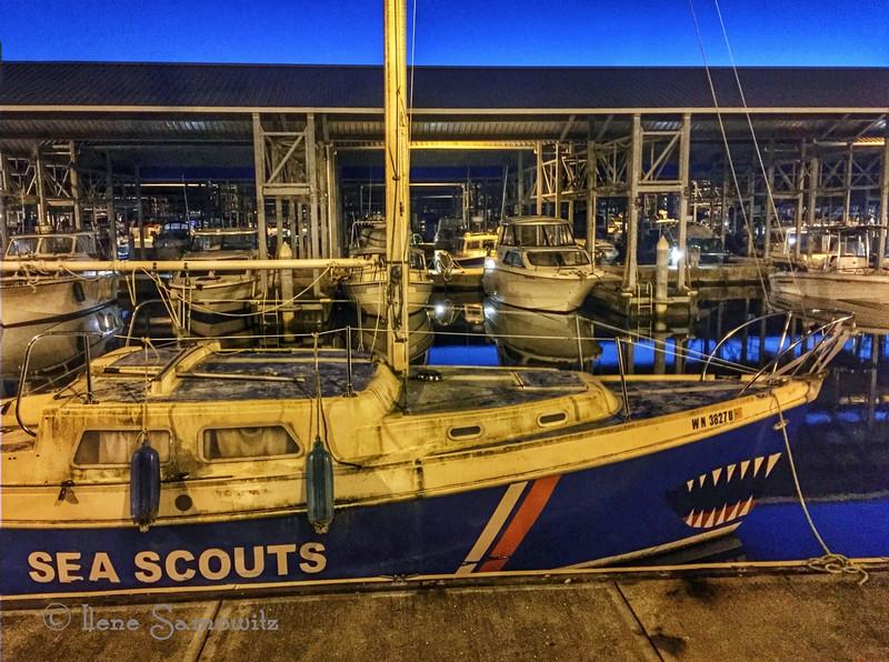 Edmonds Marina at Blue Hour