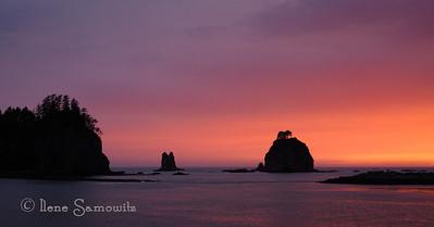 Land of Twilight -LaPush Sunset