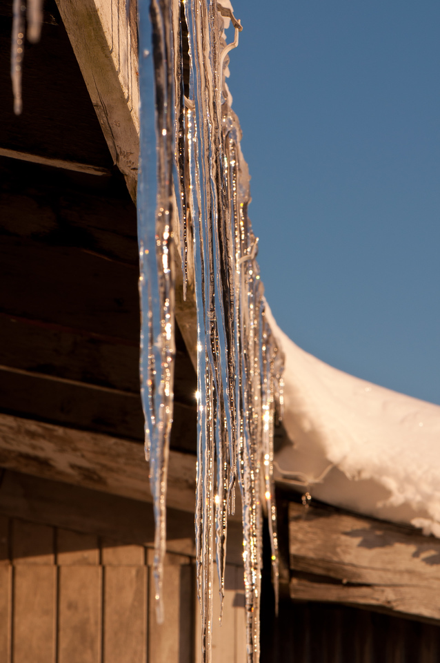 Icicles in the morning sun.