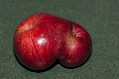 Double ended apple