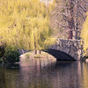 beacon hill park bridge