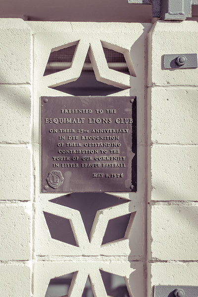 lions plaque