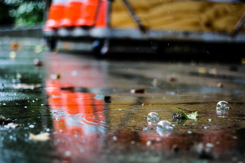 seattle rain