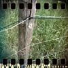 April 26th: A fence