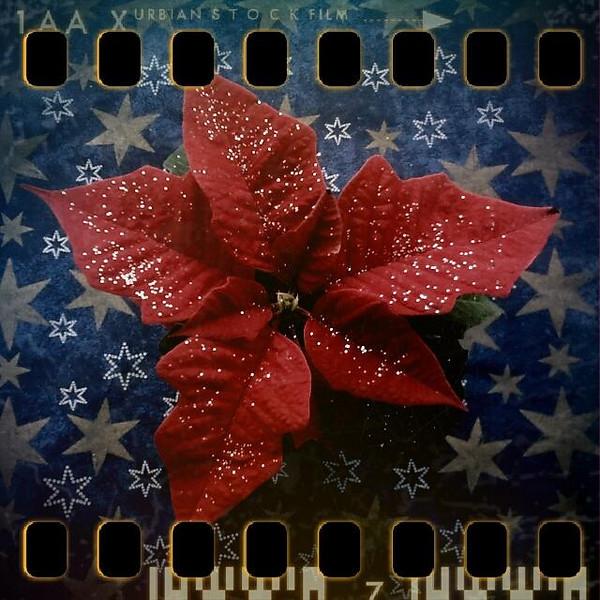 December 2nd I: Cafeteria decoration