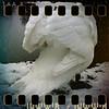 December 22nd I: Swan