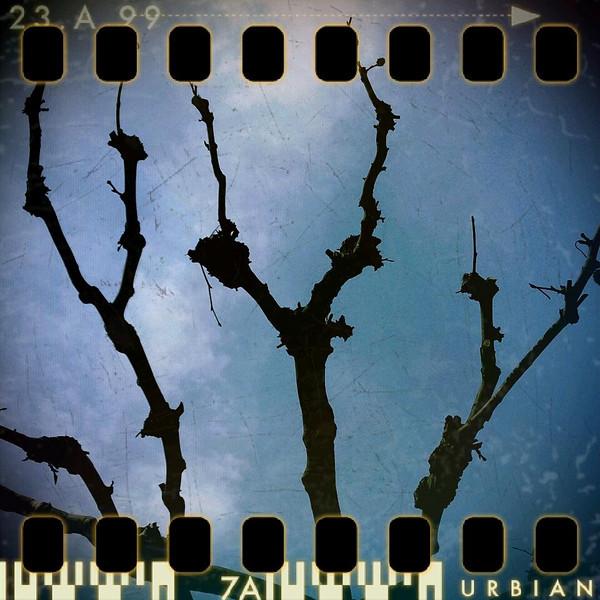 February 7th: Sky forks