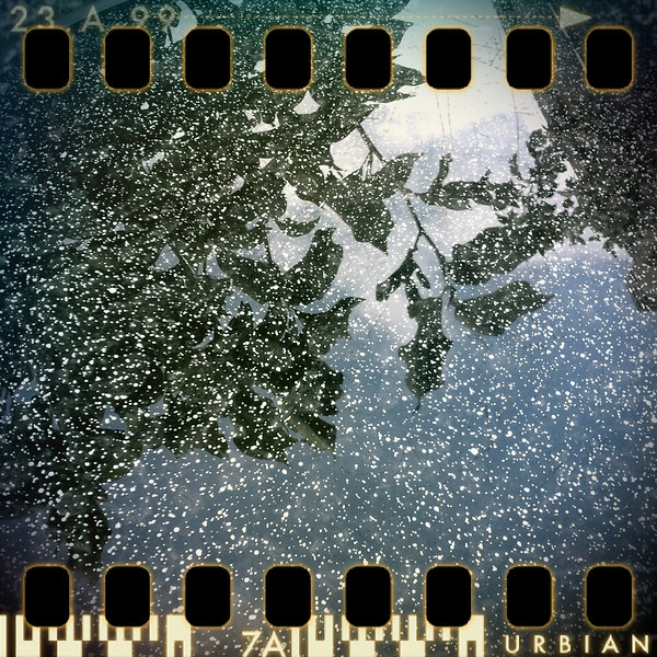 July 2nd: Wet reflection