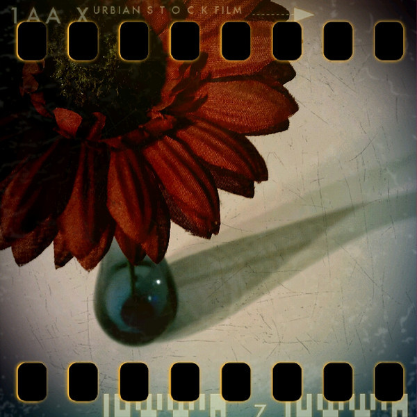 March 9th: Artificial flower