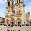 Paris Notre Dame Pigeons