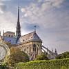 Paris Notre Dame trees
