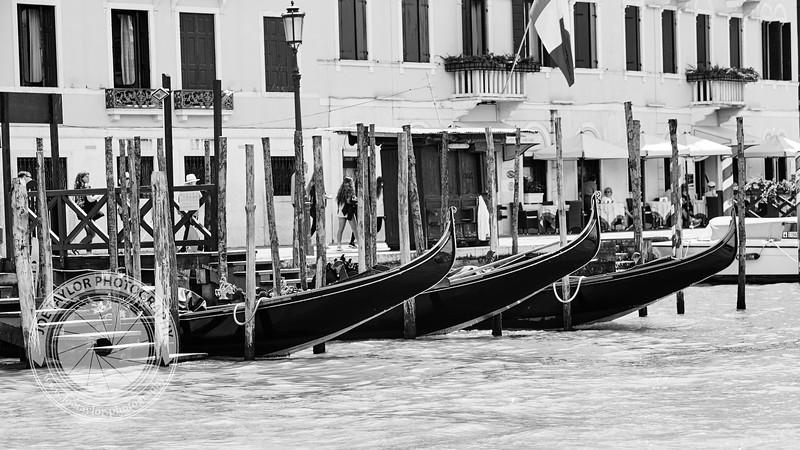 Venice Adventure