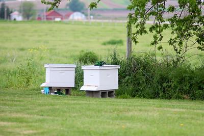 Beekeeping Class (MNR 2017)
