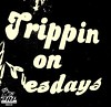 2/27 TRIPPIN ON TUESDAY!!!!!!!!!!!!!!!!!! : HAHAHA GET IT RIGHT!!!! THEY BRING DOWN THE HOUSE!!!