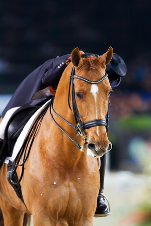 111227 Grand Prix Mechelen