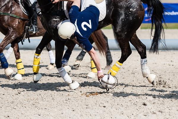 120324 Horseball Fontainebleau