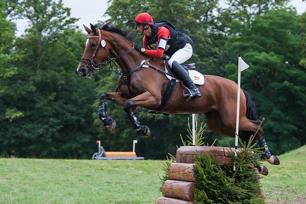 120824 CIC1* XC Haras le Pin FRA