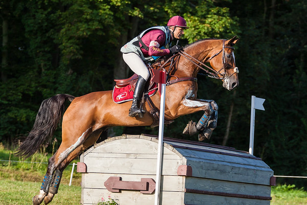 120826 CIC2* XC Haras le Pin FRA