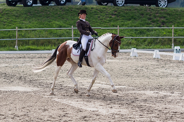 150723 Dressage CIC2* Renswoude
