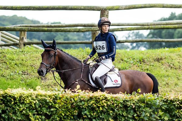 160812 NK Jonge Paarden