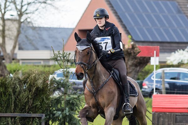 Bb Horses Waregem 2017