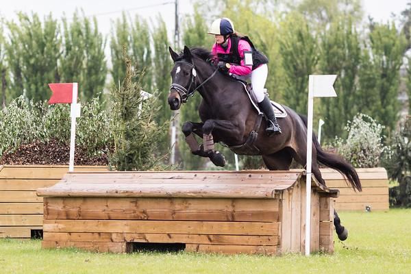 J Horses Waregem 2017