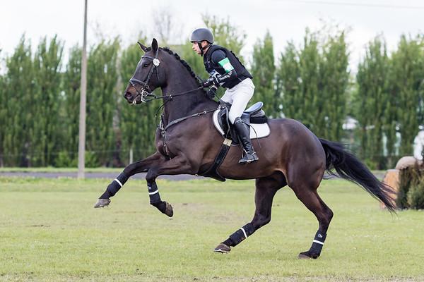 La Horses Waregem 2017